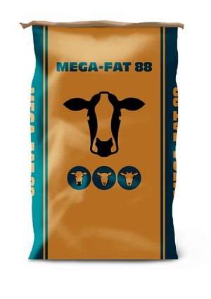 Mega fat 88 pack preview product detail