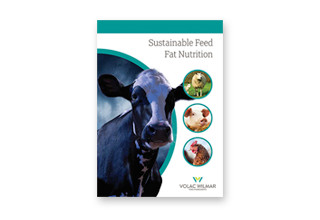 Sustainable fat brochure