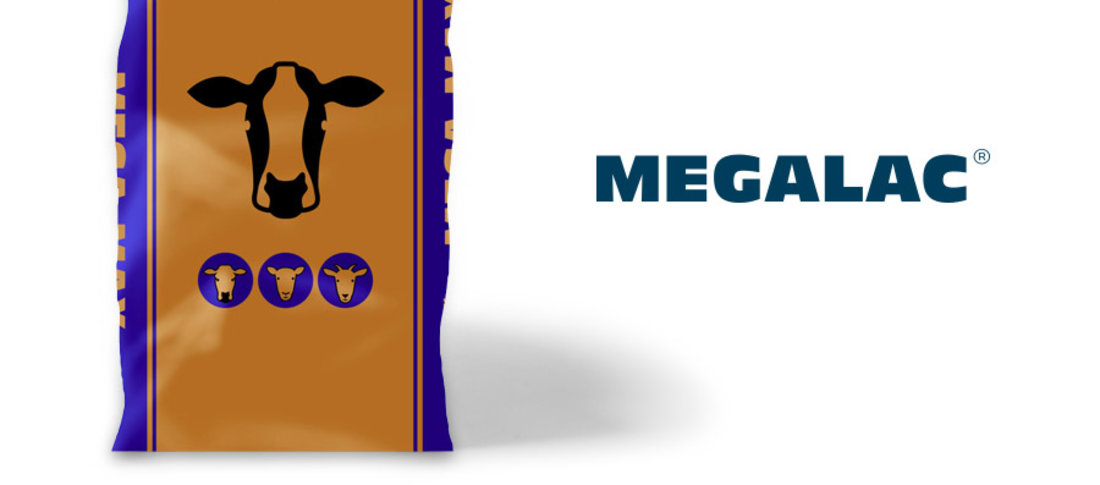00000 megalac megamax tw post 110918 banner