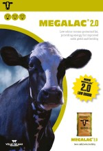 Megalac 2.0 page 1 brochure listing