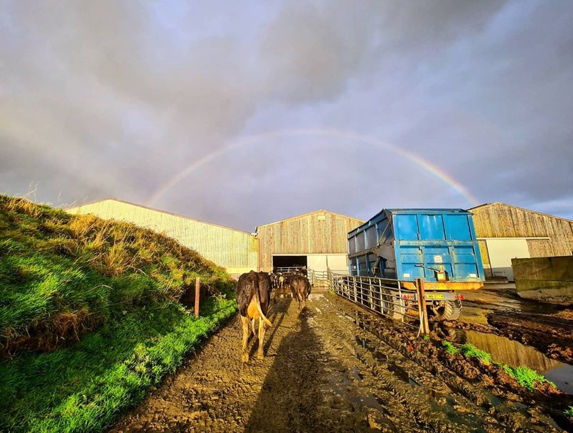 A pot of gold in each barn – surely that's verging on greedy @farmerjessiom?!